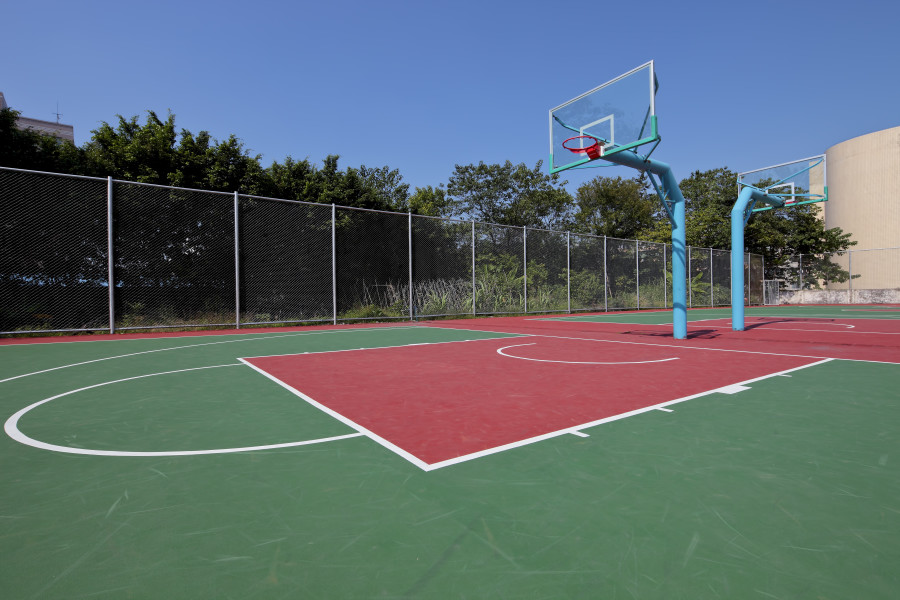 Image result for turf basketball court